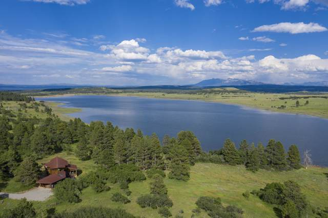 7200 44ZS Road, Norwood, CO 81423 (MLS #35346) :: Compass