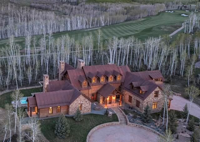 66 Salt Trail, Montrose, CO 81403 (MLS #39553) :: Telluride Real Estate Corp.