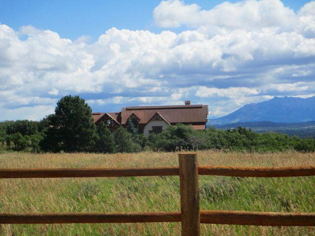 75 S44 Road, Norwood, CO 81423 (MLS #31827) :: Telluride Properties