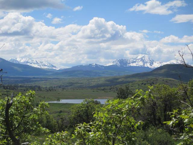 tbd N. Gurley Lake Drive #29, Norwood, CO 81423 (MLS #32689) :: Telluride Properties