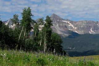 tbd Elk Run Road #31, Telluride, CO 81435 (MLS #33981) :: Nevasca Realty