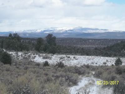 TBD 19 Ragsdale Road, Norwood, CO 81423 (MLS #34722) :: Nevasca Realty