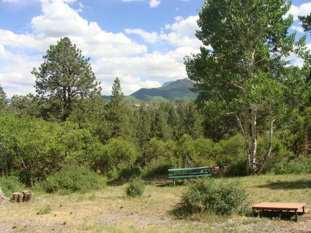 TBD Forest Hill Road #12, Ridgway, CO 81432 (MLS #35152) :: Nevasca Realty