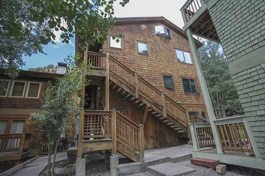 619 W Columbia Avenue D202, Telluride, CO 81435 (MLS #35411) :: Nevasca Realty