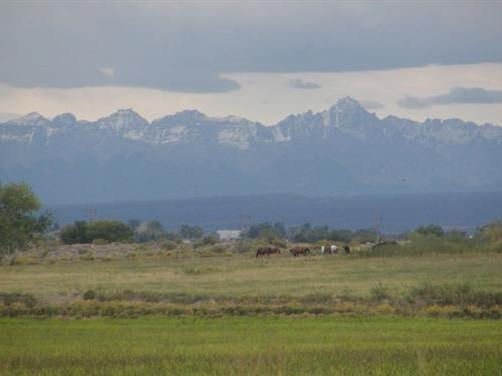 Tract 40A 5950 Road Tract 40B, Out Of Area, CO  (MLS #35713) :: Telluride Properties