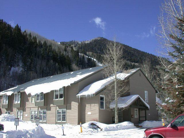 333 S Davis #415, Telluride, CO 81435 (MLS #35745) :: Telluride Properties