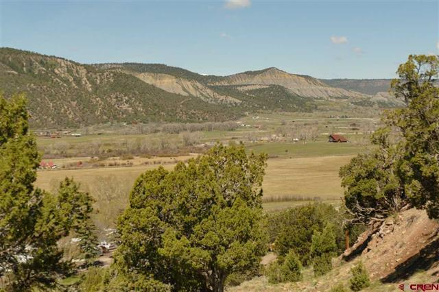 TBD Highway 550, Ridgway, CO 81432 (MLS #35902) :: Telluride Real Estate Corp.