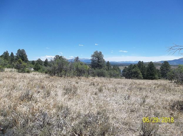 tbd S 44 Road #13, Norwood, CO 81423 (MLS #36173) :: Telluride Properties