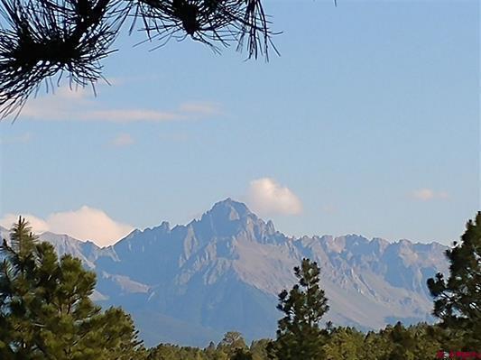 Lot 11 Big Canyon Point, Ridgway, CO 81432 (MLS #36562) :: Telluride Properties