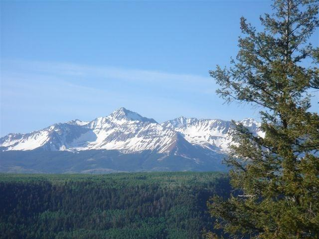 123 Dragon Lode Drive, Placerville, CO 81430 (MLS #36959) :: Telluride Properties