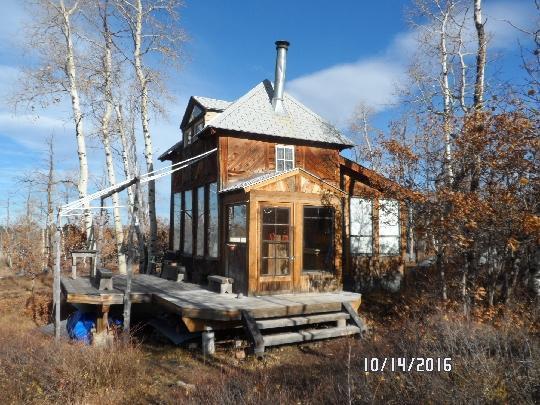 56000 II Road, Placerville, CO 81430 (MLS #37032) :: Telluride Properties