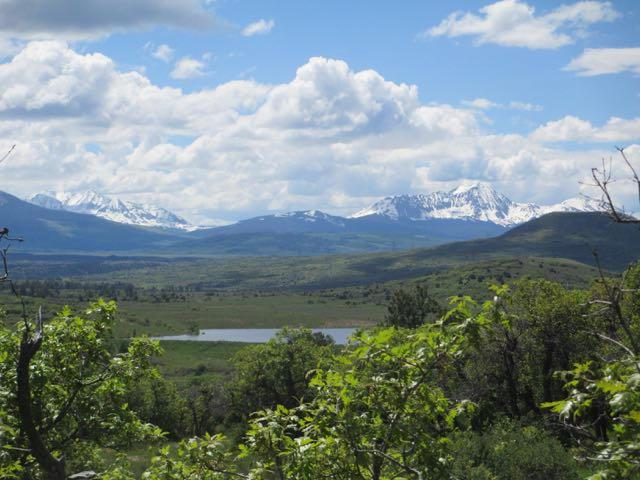 Lot 29 North Gurley Lake Drive #29, Norwood, CO 81423 (MLS #37060) :: Telluride Properties