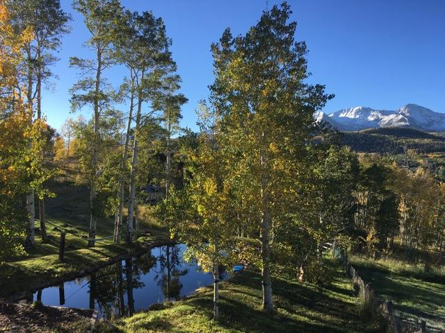 295A W Anderson Road #14, Placerville, CO 81430 (MLS #37140) :: Telluride Properties