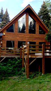 1043 Woods Road, Placerville, CO 81430 (MLS #37551) :: Telluride Properties