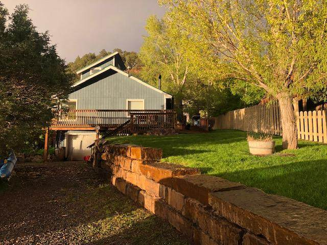 110 Third Street, Placerville, CO 81430 (MLS #38078) :: Telluride Real Estate Corp.