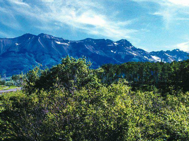 Lot 803 Arizona Street #803, Mountain Village, CO 81435 (MLS #38779) :: Telluride Properties