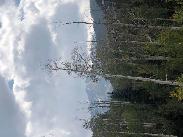 TBD Vischer Drive #7, Mountain Village, CO 81435 (MLS #38804) :: Compass