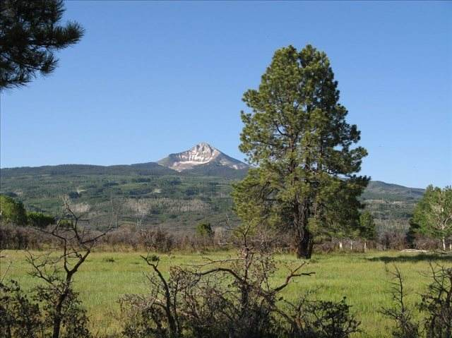 Lot 14 44Zs (Lone Cone) Road #14, Norwood, CO 81423 (MLS #39378) :: Telluride Real Estate Corp.