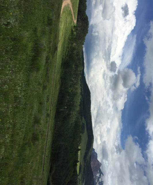 TBD Little Cone Ranch Road Tract 2, Placerville, CO 81430 (MLS #39618) :: Compass