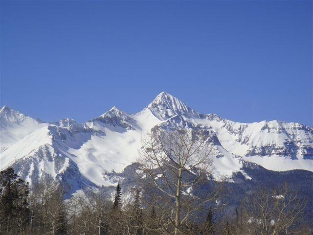 Lot 16 Elk Run Rd #16, Telluride, CO 81435 (MLS #29726) :: Nevasca Realty