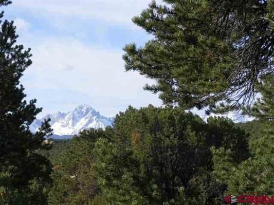 671 Bristlecone, Ridgway, CO 81432 (MLS #34066) :: Telluride Properties