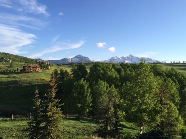 115 Lawson, Mountain Village, CO 81435 (MLS #36958) :: Nevasca Realty