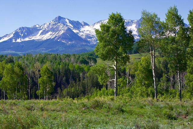 TBD Blunt Road A1,A2,A3, Placerville, CO 81430 (MLS #39470) :: Telluride Properties