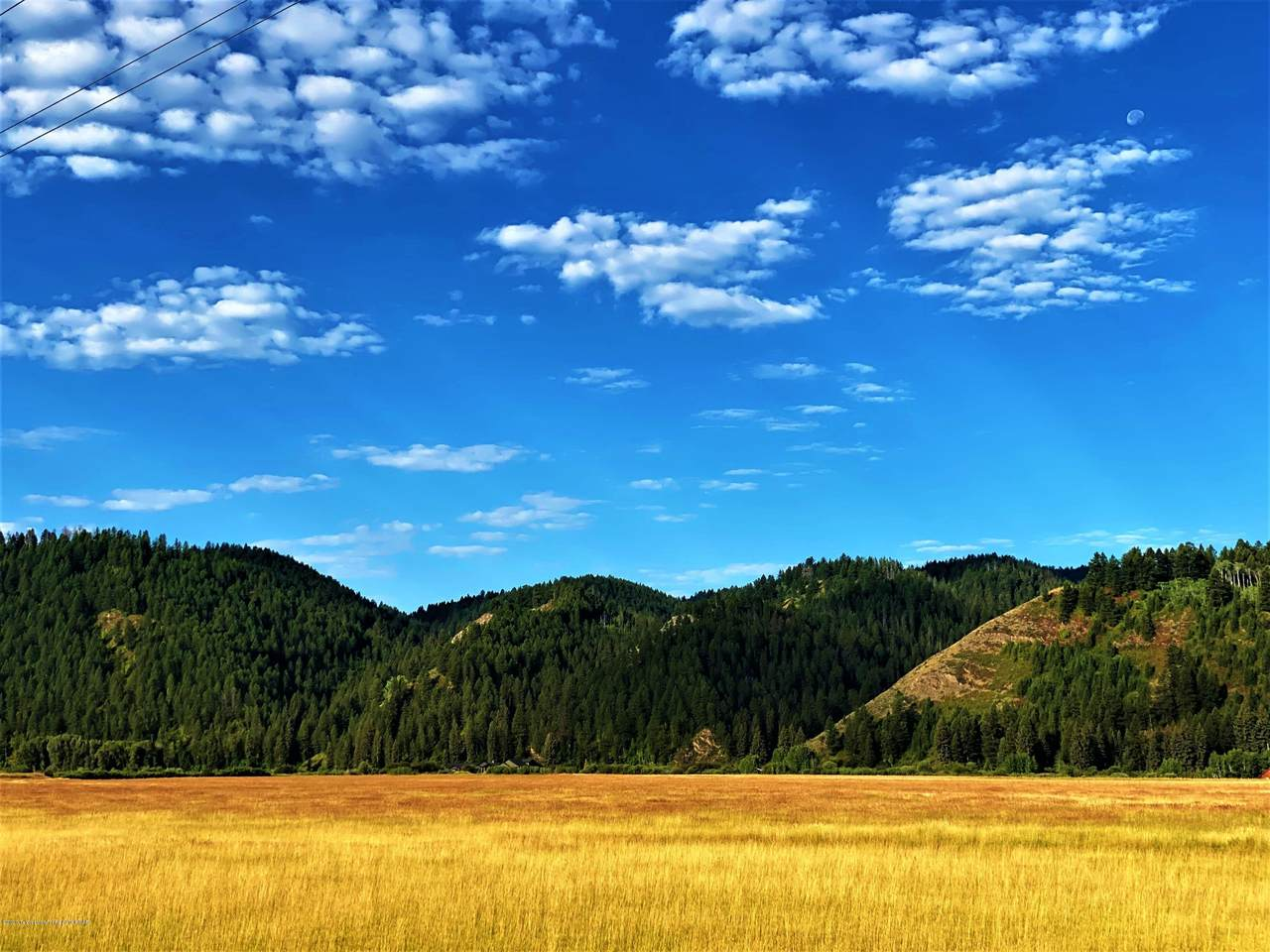 XXX Double Eagle Ranch Road - Photo 1