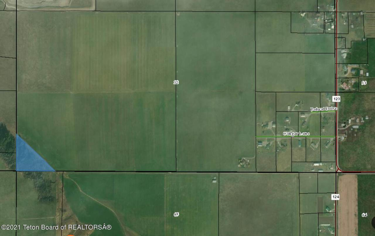 TBD Co.Rd.123 - Photo 1