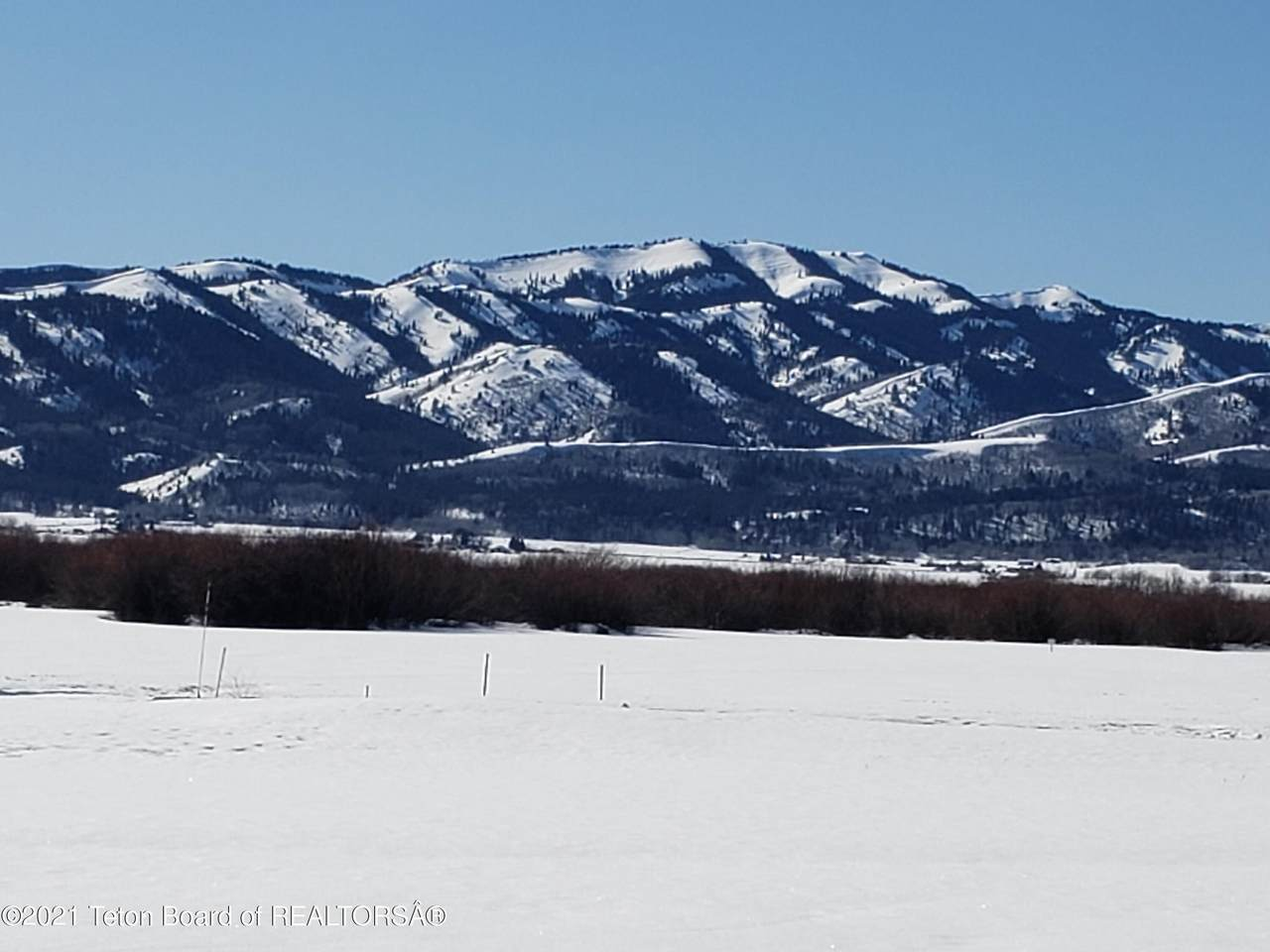 7436 Fox Meadows - Photo 1
