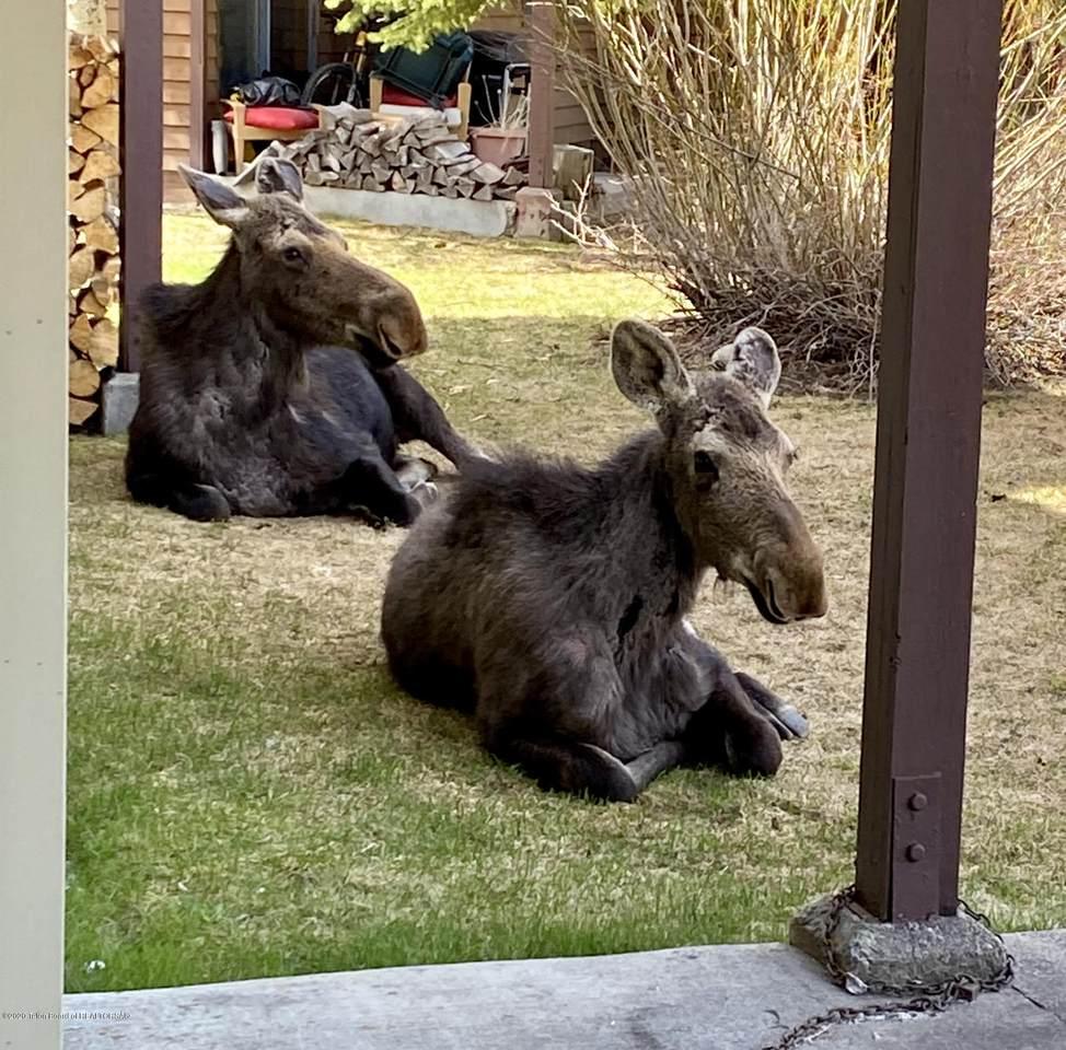 3675 Teton Drive - Photo 1