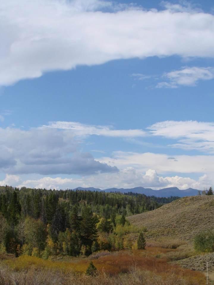 LOT 2 Aspen Drive - Photo 1
