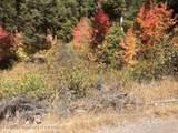 717 Cedar Drive - Photo 1