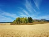 05-000776 285 GRAND MOUNTAIN VIEW LANE - Photo 21