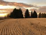 05-000776 285 GRAND MOUNTAIN VIEW LANE - Photo 6