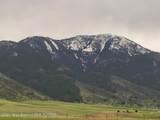 105 Elk Path - Photo 1