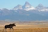 9100 River Rim Ranch Rd - Photo 12
