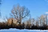212 Cloudveil Ct - Photo 1