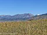 LOT 5 Stonefly Ranch - Photo 5