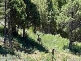 SE4 NW4 Timber Ridge Drive - Photo 12