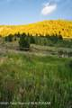 2116 Hidden Ranch Ln - Photo 7