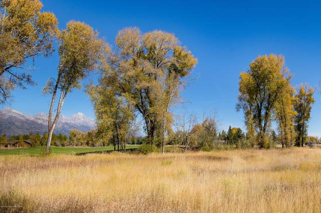 6035 N Spring Gulch Rd, Jackson, WY 83001 (MLS #18-2643) :: West Group Real Estate