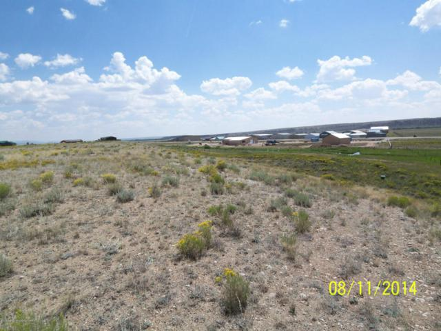 TRACT 2 Bridle Bit Ln, Pinedale, WY 82941 (MLS #14-2154) :: West Group Real Estate