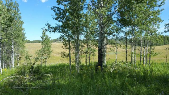 10620 Snowy Lane Lot 28, Tetonia, ID 83452 (MLS #16-2182) :: Sage Realty Group