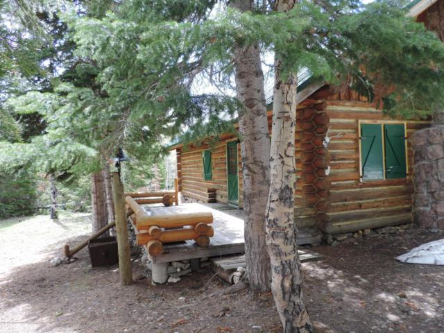 Address Not Published, Saratoga, WY 82331 (MLS #17-1091) :: West Group Real Estate