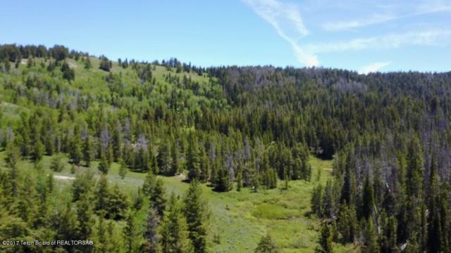 LOT 4 Deer Haven Rd, Bondurant, WY 82922 (MLS #17-1734) :: Sage Realty Group