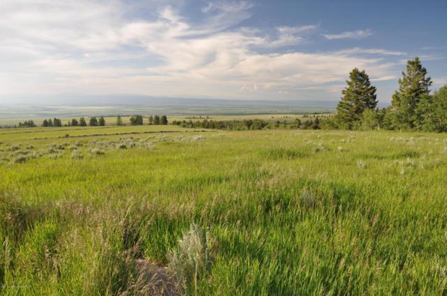 Pony Creek Rd, Tetonia, ID 83452 (MLS #17-1918) :: Sage Realty Group
