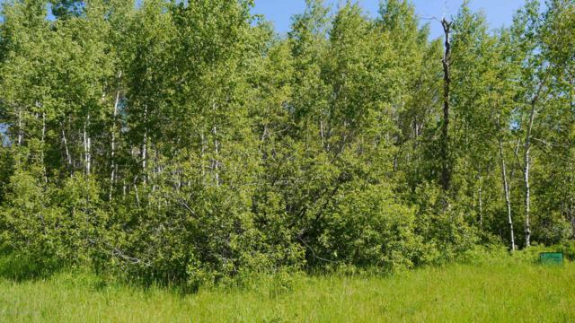 11134 Beaver Blvd, Tetonia, ID 83452 (MLS #17-2037) :: Sage Realty Group