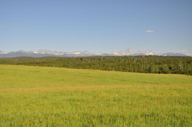 Address Not Published, Lamont, ID 83420 (MLS #17-2271) :: West Group Real Estate