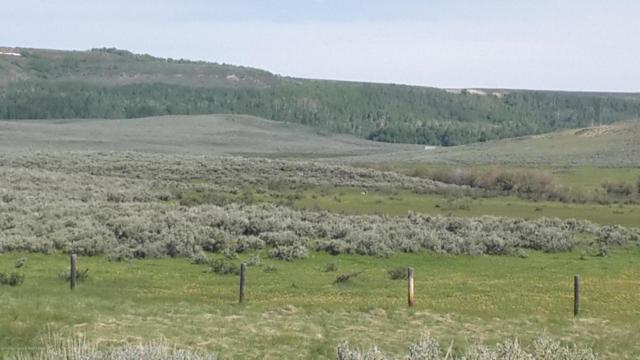 32 Elk Horn Rd, Daniel, WY 83115 (MLS #17-2487) :: West Group Real Estate